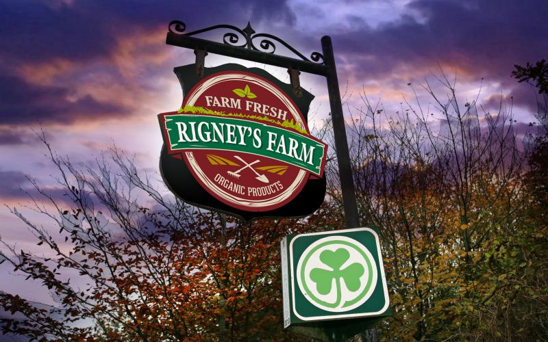 Rigneys Food Produce is made right on the farm