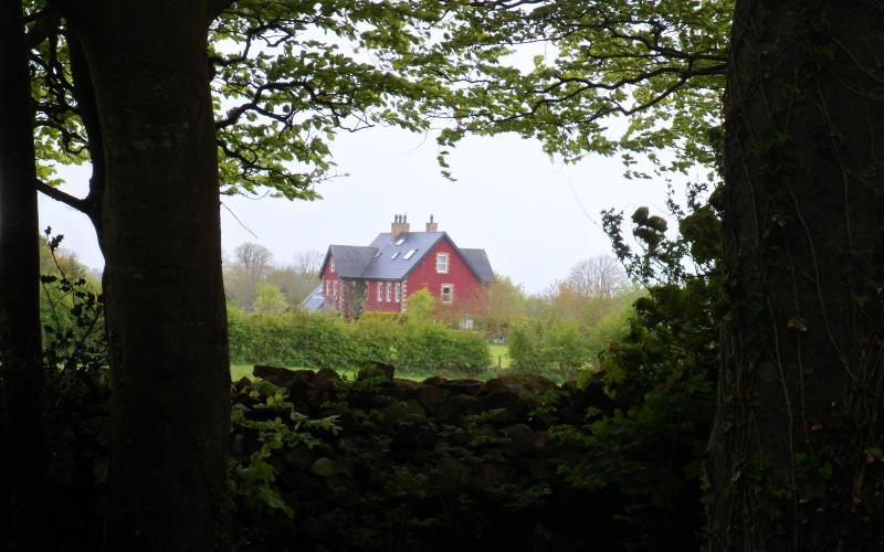 Our Bed and Breakfast is right on the boundary of Curraghchase Forest Park