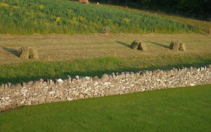 Haystacks and Stone Walls - our Irish Farm